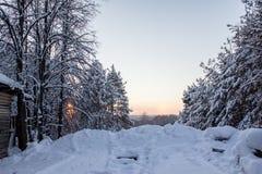 Frostig afton Royaltyfri Fotografi