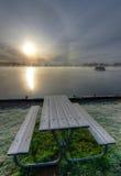 Frostig bänk nära sjön Arkivfoton