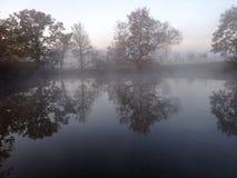Frostig lake Royaltyfri Foto