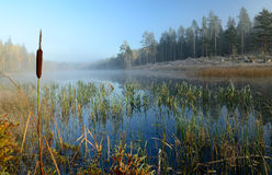 frostig lake oktober s royaltyfria foton