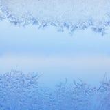 Frostig modell Arkivfoton