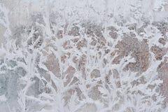 Frostig modell på det glass vinterfönstret, blick till och med exponeringsglas arkivbilder