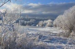 Frostig morgon Royaltyfria Foton