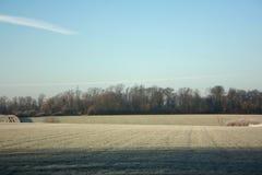frostig morgon Royaltyfria Bilder