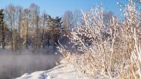 Frostig morgon i den Ural skogen med floden och dimma, Ryssland, Royaltyfria Bilder