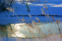 Frostig morgon Kudma flod Ryssland royaltyfri foto