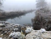 Frostig morgonsikt från en bro över en flod i misten Arkivfoton