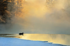 frostig morgonvinter Royaltyfri Bild