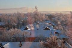 frostig morgonvinter Arkivfoto