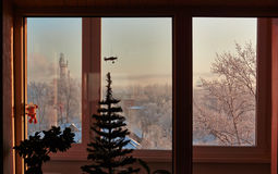 frostig morgonvinter Royaltyfri Fotografi
