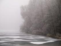 Frostig sjölandskapgrå färg-vit Arkivbilder
