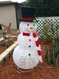 frostig snowman Royaltyfri Fotografi