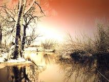 frostig solnedgångvinter royaltyfri fotografi
