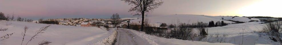 frostig vinter för morgonnatursnowfall Arkivfoton