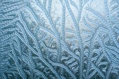 Frostiga modeller på exponeringsglas i vinter Arkivbilder