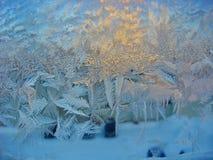 Frostiga modeller på lägenhetfönstret Naturattraktioner På natten fanns det en sträng frost, fönstret täcktes med modeller royaltyfria bilder
