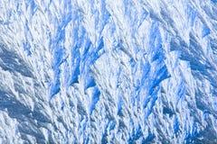 frostiga naturliga modeller Fotografering för Bildbyråer