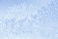 frostiga naturliga snowflakes Royaltyfri Bild