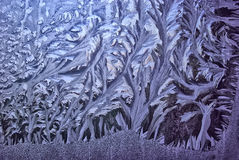 Frostiga vintermodeller på fönstren januari Royaltyfria Foton