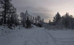 Frostigt avstånd för vinterafton royaltyfri foto