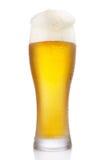 Frostigt exponeringsglas av öl royaltyfria bilder