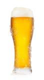 Frostigt exponeringsglas av öl arkivfoto