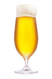 Frostigt glass exponeringsglas av öl Arkivfoto