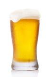 Frostigt halv literexponeringsglas av öl Arkivbild