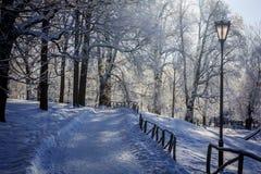 Frostigt landskap för morgonvinter i parkera för ligganderussia för 33c januari ural vinter temperatur Sträng frost, snöig träd,  royaltyfri bild