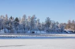Frostigt landskap för morgonvinter i parkera för ligganderussia för 33c januari ural vinter temperatur Sträng frost, snöig träd,  royaltyfri foto