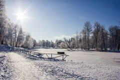 Frostigt landskap för morgonvinter i parkera för ligganderussia för 33c januari ural vinter temperatur Sträng frost, snöig träd,  arkivbilder