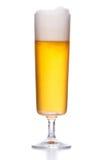 Frostigt ljust öl med skum på vit fotografering för bildbyråer