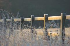 frostigt staket Arkivbild