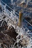 frostigt staket Royaltyfria Foton