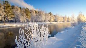 Frostigt vintermorgonlandskap med mist- och skogfloden, Ryssland, Ural royaltyfria bilder