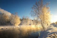 Frostigt vintermorgonlandskap med mist- och skogfloden, Ryssland, Ural arkivfoton