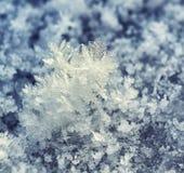 Frostkristaller. Royaltyfri Bild