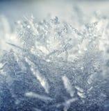 Frostkristaller. Royaltyfria Bilder