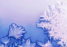 frostmodell Arkivbild