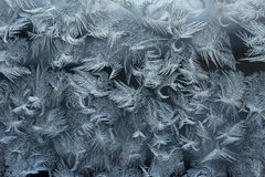 Frostmodeller på ett fönster förser med rutor Arkivbild