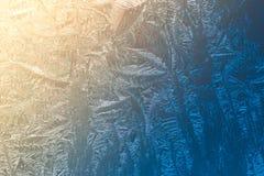 Frostmodeller på fönstermakroen Royaltyfri Fotografi