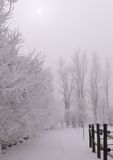 frostvinter Arkivbild