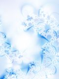 Frostwork. Dreamlike ice-flowers on a windowpane Royalty Free Stock Photo