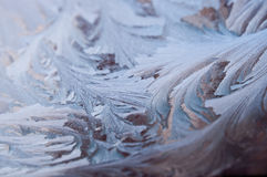 Frostwork Royalty-vrije Stock Foto