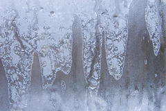 Frostwork on a window glass Stock Images