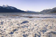 Frosty Alaskan Beach Imágenes de archivo libres de regalías