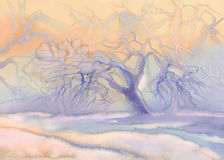 Frosty apple tree bright. Winter landscape watercolor background. Winter blue landscape with trees and snow Stock Image