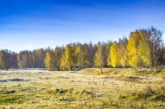 Bright autumn landscape Royalty Free Stock Photos