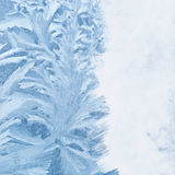 Frosty background Royalty Free Stock Photos