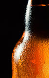 Frosty beer bottle Royalty Free Stock Photo